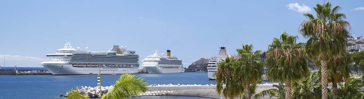 Cruises Page banner image