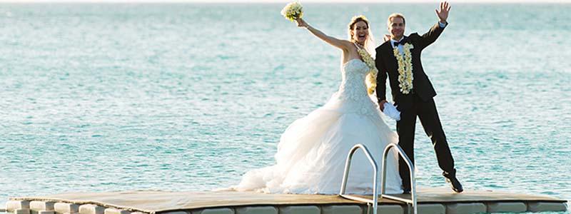 Weddings & Honeymoons Page banner image